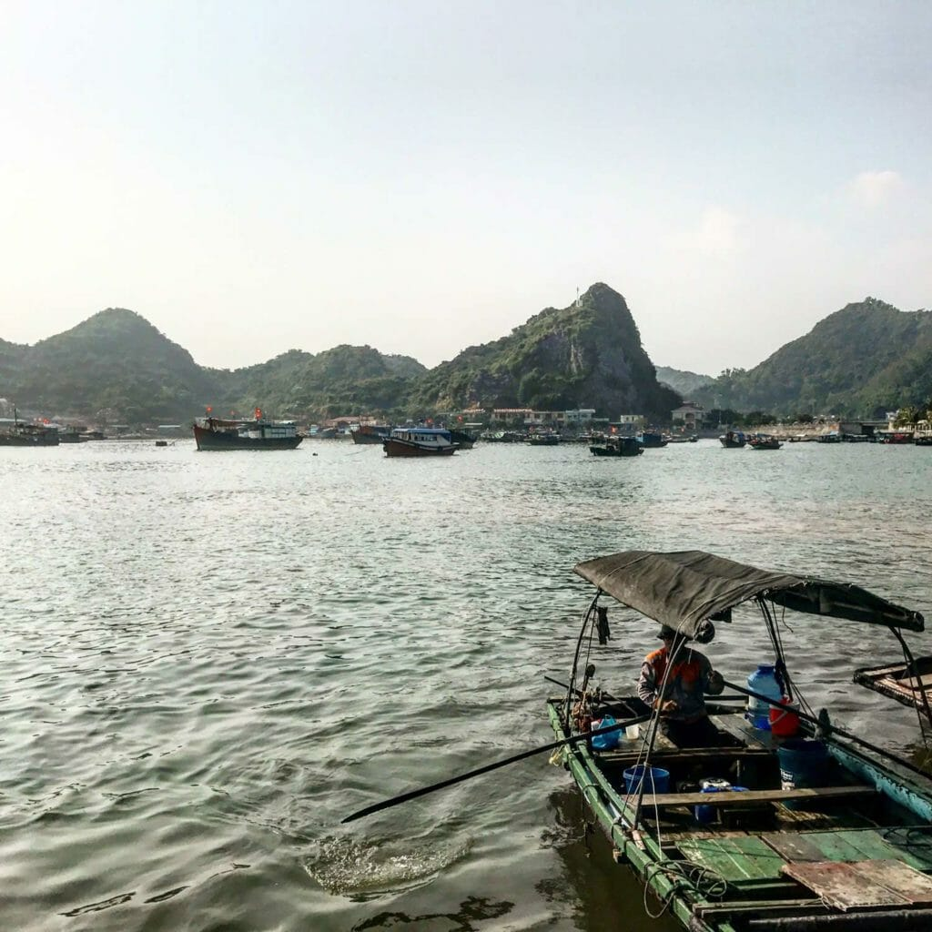 Cat Ba Harbor Boats