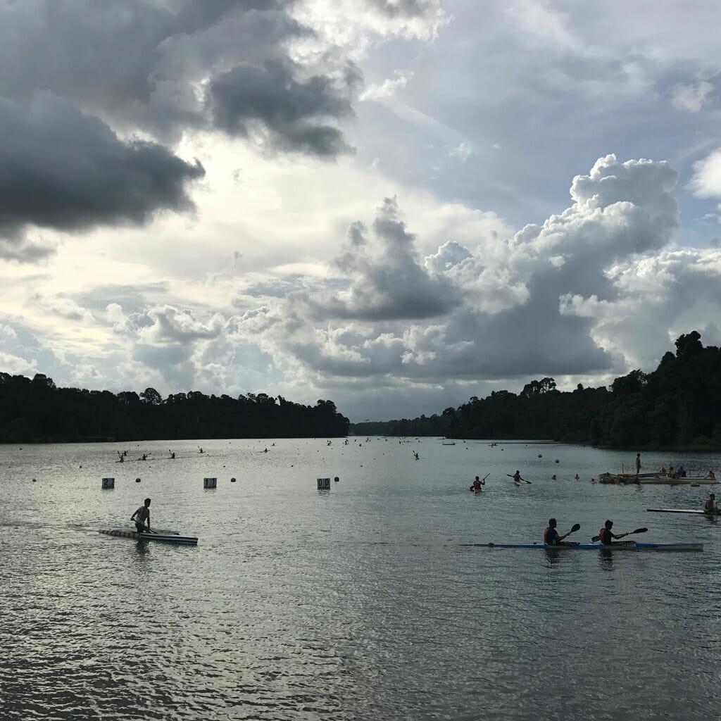 Singapore-MacRitchie-Park-10