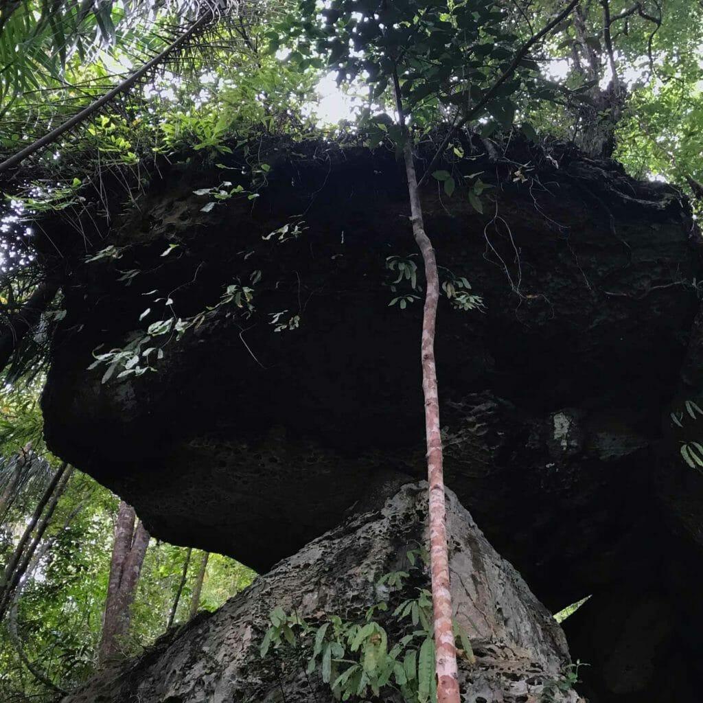 Kuching-Bako-Rock